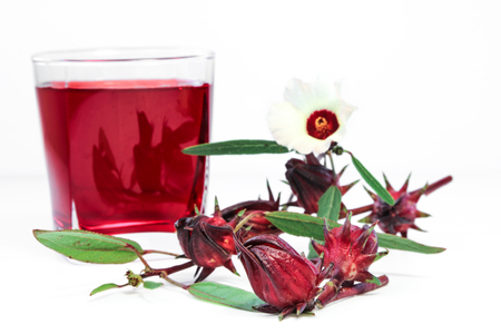 Fresh Roselle fruits against a cup of Roselle tea on white background. photo