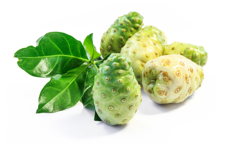 Noni fruit and Noni leaf.