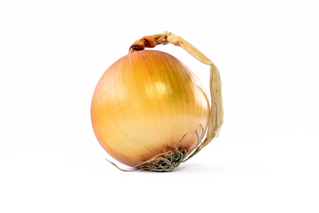Onion vegetable bulb isolated on white background