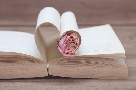 Enige droge roze nam op het oude Hart gevormde boek, roze tonen, Valentine-concept toe. Stockfoto - 93640997