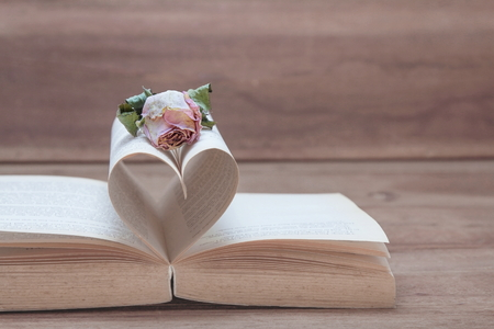 Dried pink rose on the old Heart shaped book, pink tones, Valentine concept. Stock Photo