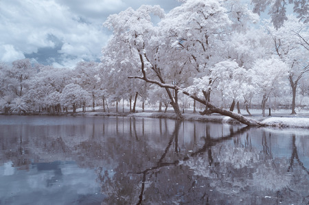 Infrared photography (color), Vachirabenjatas Park, land mark of Bangkok, Thailand. Stock Photo