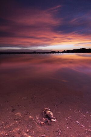Sunset and twilight view with small crab from Klong Talu Beach, Krabi province, south of Thailand. Stockfoto - 128618968
