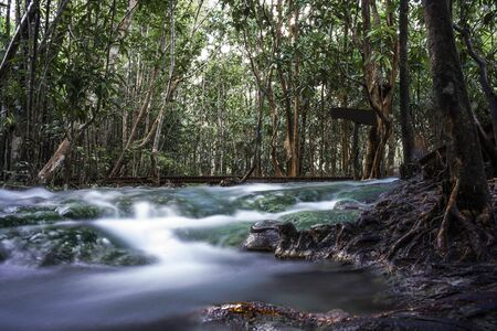 Long exposure photography of river source at The Emerald Pool, Krabi province, south of Thailand country.