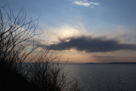 Sunset over the sea. Bare branches against sunset sky. Imagens