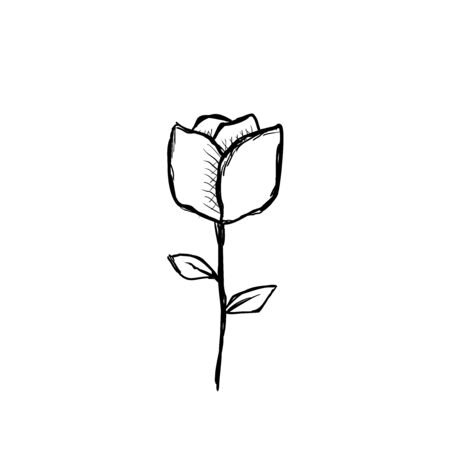 Flower. Vector sketch in doodle style.