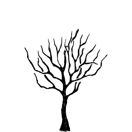 Tree. Vector sketch in doodle style. Illustration