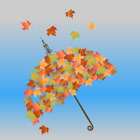 withering: umbrella of autumn leaves