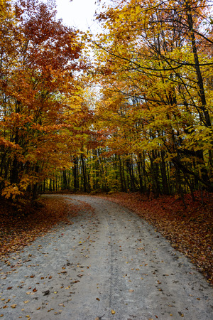 Gorgeous display of fall colors, leaves, red, orange, green and yellow trees coverd empty road as tunel leading your eye through the picture. Pictured Rocks National Lakeshore Munising, MI, USA Stock Photo
