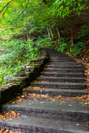 Stone stair in forest in Buttermilk Falls State Park, Ithaca, NY, USA Reklamní fotografie