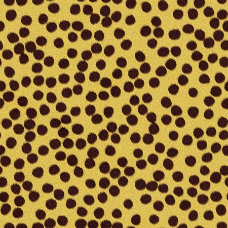 Seamless pattern of cheetah fur with brown spots Stock Photo - 4098434