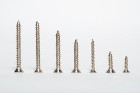 Metal screws on a white background