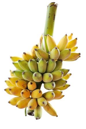 Banana isolated on white background Stock Photo - 14742282