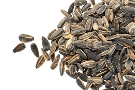 Sunflower seed on isolated white background