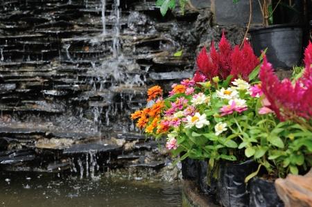 Magn�fica cascada jard�n de la fuente