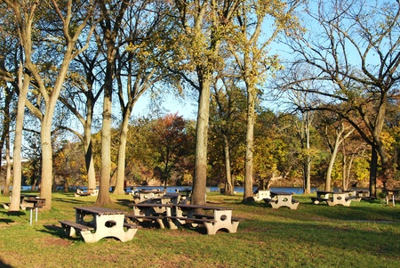 Picnic Table and Barbecue Grill at State Park 版權商用圖片 - 11575524