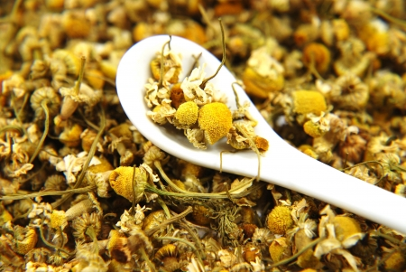 chamomile flower: Dried chamomile with white spoon