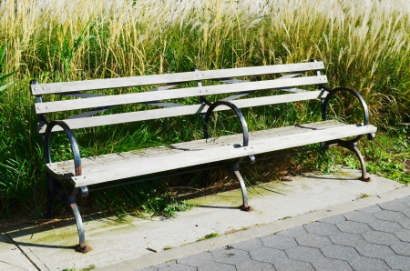 bench in the park Stock Photo - 15564720