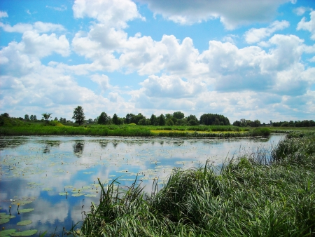 Lake in summer Stock Photo - 15734601