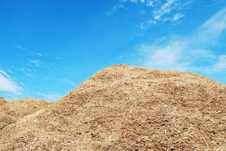 Pile of wood chips Stock Photo