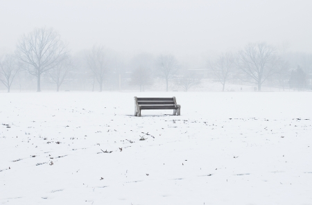 bench Stock Photo - 16758672