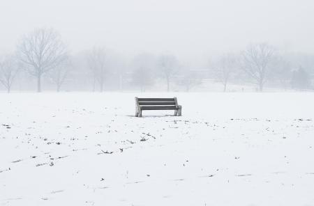 bench Stock Photo - 16758672
