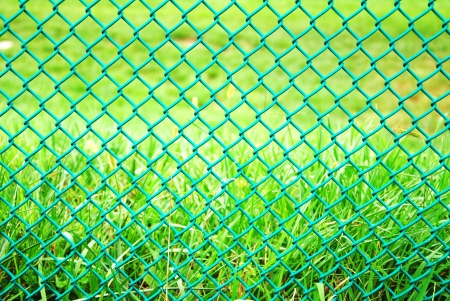 iron wire fence Stock Photo - 16936951