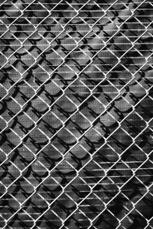 wire fence Stock Photo - 17108365