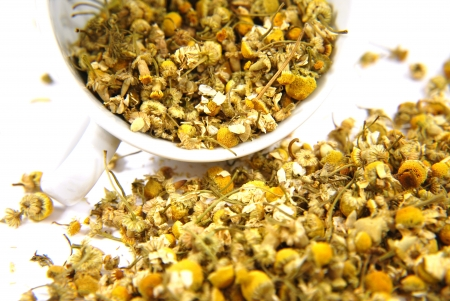 chamomile flower: Dried chamomile with in the white cup