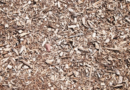 Pile of wood chips of background Stock Photo - 17278618