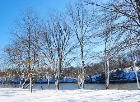 winter park Stock Photo - 18567137