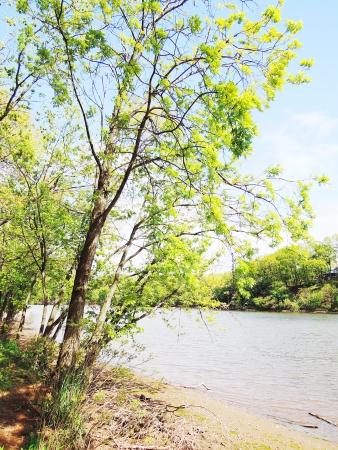 river photo