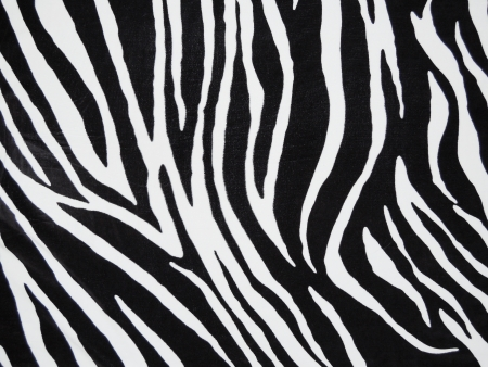 Texture of black and white zebra textile photo