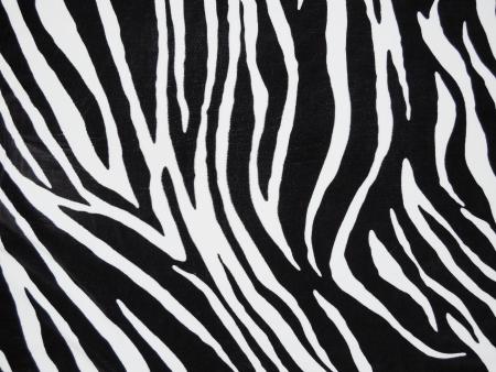 zebra print: Texture of black and white zebra textile Stock Photo
