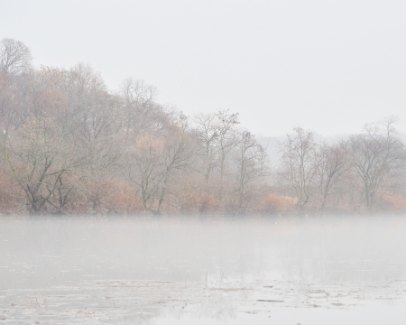 Misty lake in morning photo
