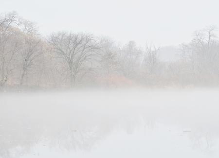 Misty lake in morning photo