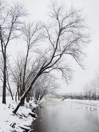 winter in river photo