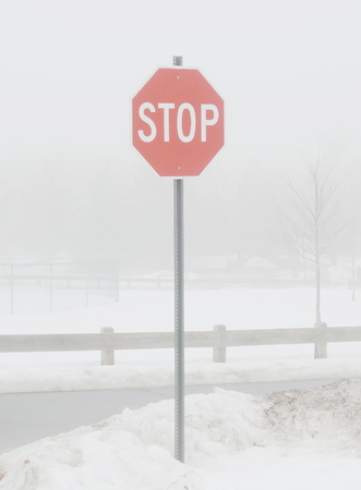 stop sign in the misty park