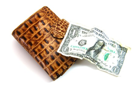 wallet and dollar photo
