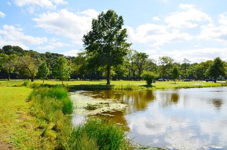 Autumn in Lake photo