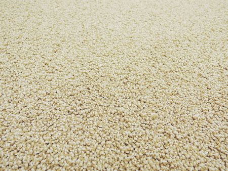 carpet texture Stockfoto