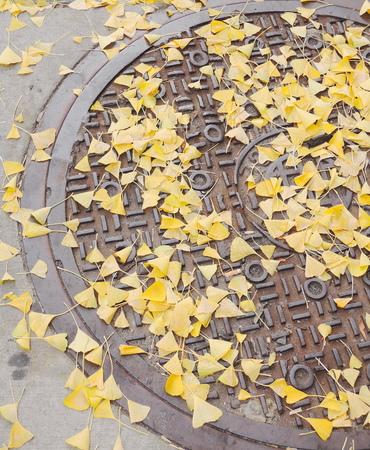 manhole photo