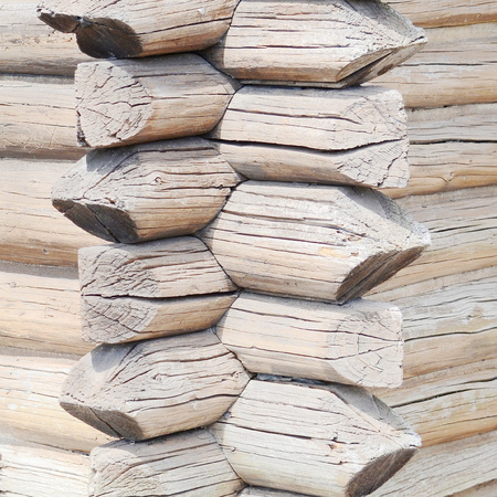 calibrated: Background pattern of a log wall