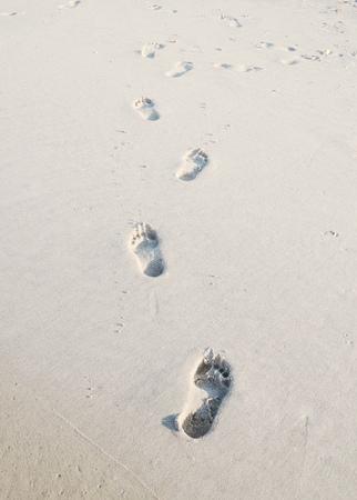 desert footprint: Footprints in sand
