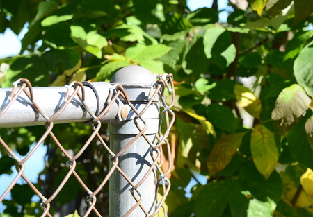 penal system: Fence Stock Photo