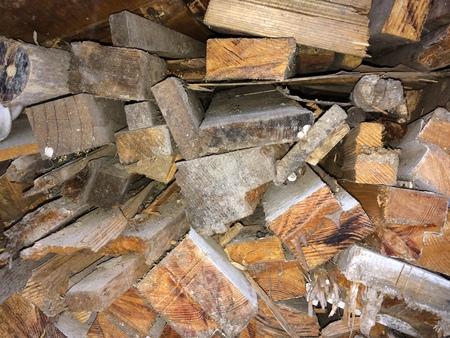 wood pile: Waste wood pile
