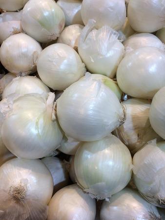 cebolla blanca: White onion Foto de archivo