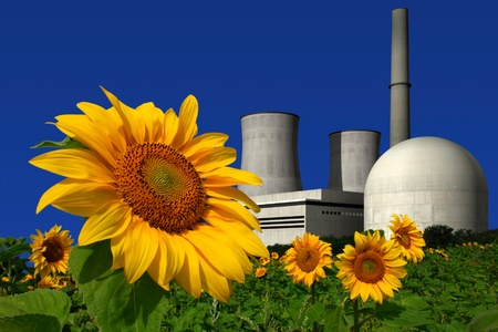 nuclear waste: Nuclear power plant behind a sunflower field Stock Photo