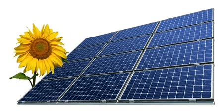 Mono-crystalline solar panels and sunflower against a white background photo