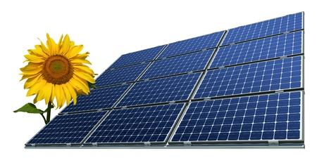Mono-krystaliczne panele słoneczne i słonecznika na białym tle